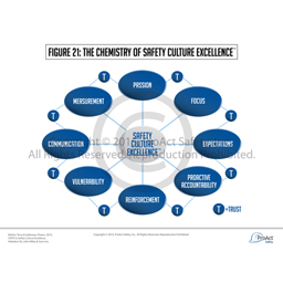 The Chemistry of Safety Culture Excellence