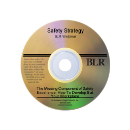 Safety Strategy: The Missing Component of Safety Excellence; How To Develop It at Your Workplace